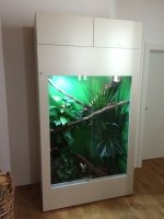 terrarium tropen thaur at angerer aquarien und terrarien. Black Bedroom Furniture Sets. Home Design Ideas